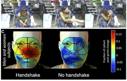 """L'immagine fa vedere tre fotogrammi presi da un filmato e mostrano il prima-durante-dopo la stretta di mano. La figura sotto rappresenta a colori la frequenza con cui i volontari si sono toccati la faccia dopo aver incontrato lo sperimentatore con (""""with handshake"""") e senza stretta di mano ('no handshake""""). Il colore rosso indica un """"toccarsi spesso"""" e blu """"toccarsi meno o per niente"""". Fonte: Idan Frumin et al. eLife Sciences 2015;4:e05154"""