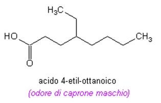 caprone
